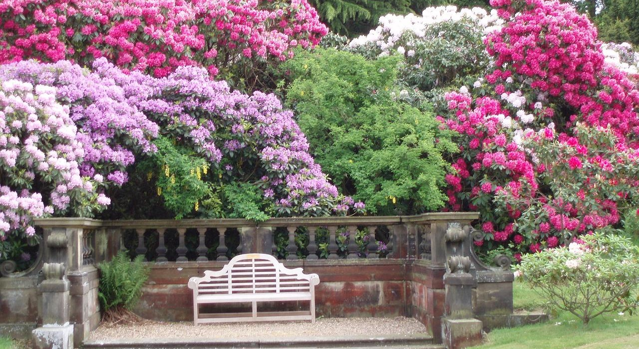 Colourful garden trees and flowers with white bench