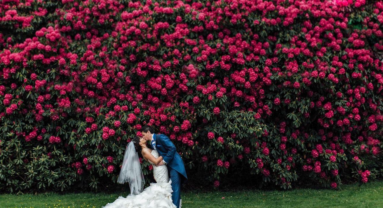 Wedding couple under lots of pink flowers